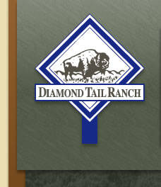 Diamond Tail Ranch Logo